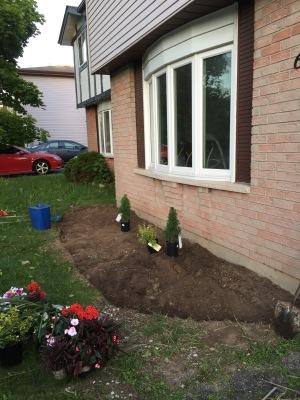 Deciding where to plant everything